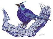 Pen And Ink Drawing Of Blue Bird Print by Mario  Perez
