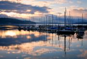 Docked Sailboats Framed Prints - Pend Oreille Sailboats Framed Print by Idaho Scenic Images Linda Lantzy