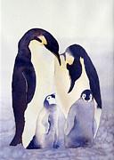 Laurel Best - Penguin Family