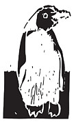 Penguin Drawings - Penguin by Gerhardt Isringhaus