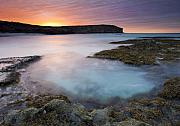 Tidepool Photos - Pennington Dawn by Mike  Dawson