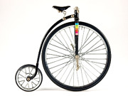 Penny Farthing Bike Model Print by Ralph Brannan