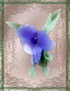 Idealized Prints - Penny Postcard Wildflower Print by RC DeWinter