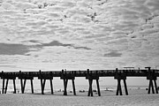 Steven Gray Prints - Pensacola Beach Print by Steven Gray