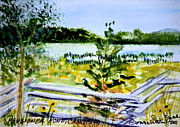 Landscape Paintings - Pensioner Pond in Charleston Vermont by Donna Walsh