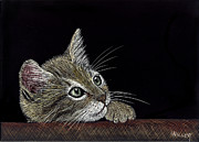 Etching Mixed Media - Pensive Kitten by Linda Hiller