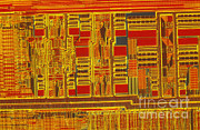 Processor Prints - Pentium Print by Michael W. Davidson