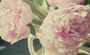 Petal Framed Prints - Peonies Framed Print by Gigi Thibodeau
