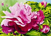 Flower Painting Originals - Peonies in Pink by Janis Grau