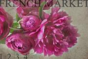 Market Photos - Peonies by Rebecca Cozart
