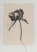 White Tapestries - Textiles Originals - Peony 2 Stitched Sketch by Kelly Darke