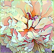 Mindy Newman Digital Art Posters - Peony Poster by Mindy Newman