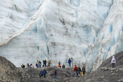 Observing Photos - People In Front Of Exit Glacier by Rich Reid