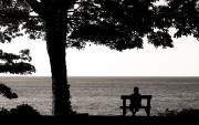 Lake Erie Framed Prints - People Watching Framed Print by Brian M Lumley