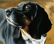 Dog Portrait Originals - Pepper by Rich Marks