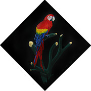 Macaw Art Paintings - Perched Macaw Original by Peter Piatt