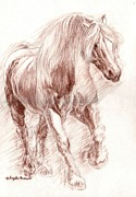 Percheron Drawings Posters - Percheron Power Poster by Angela Marks