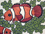 Clown Fish Drawings - Percula Clownfish by Daniel Goodwin
