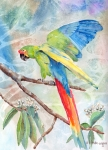 Parrot Painting Metal Prints - Perfect Landing Metal Print by Arline Wagner