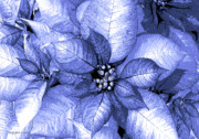 Shimmer Prints - Periwinkle Shimmer Print by DigiArt Diaries by Vicky Browning