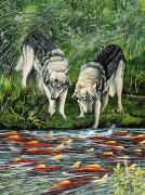 Salmon Paintings - Perplexed Wolves by Bob Patterson