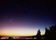 Perseid Metal Prints - Perseid Meteor Trail Metal Print by David Nunuk