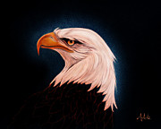 Bald Eagle Painting Framed Prints - Perserverance II Framed Print by Adele Moscaritolo