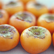 Persimmons Posters - Persimmon Fruits Poster by David Munns