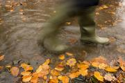 Nature Walks Prints - Person In Motion Walks Through Puddle Print by John Short