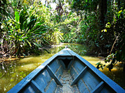 Madre Posters - Peru Amazon Boat Poster by Photo, David Curtis