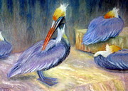 Greens Pastels Framed Prints - Peruvian Pelicans One  Pastel Framed Print by Antonia Citrino
