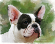 Dogs Digital Art - Pet Bulldog Portrait by Michael Greenaway