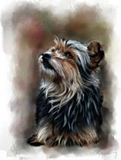 Dog Pet Portraits Mixed Media Posters - Pet Dog Portrait Poster by Michael Greenaway