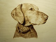 Pet Dog Pyrography Framed Prints - Pet Portrait - Hunter Framed Print by Adam Owen