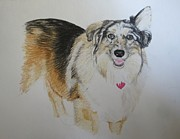 Brindle Originals - Pet Portrait Collie Watercolor Memorail 18 x 24 inch by Pigatopia by Shannon Ivins