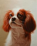 Custom Pet Portraits From Photos Framed Prints - Pet Portrait of a Cavalier King Charles Spaniel Framed Print by Eric Bossik