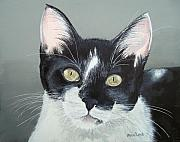 Tuxedo Originals - Pet Portrait Painting Commission Tuxedo Cat  by Sharon  Lamb