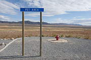 Stop Sign Photos - Pet Relief Area at Highway Rest Stop by Thom Gourley/Flatbread Images, LLC