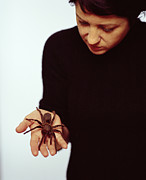 Pet Therapy Posters - Pet Tarantula Poster by Lawrence Lawry