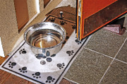 Paw Prints Digital Art - Pet Water Bowl - Shopfront by Steve Ohlsen