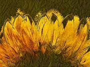 Petales De Soleil - A43t02b Print by Variance Collections