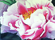 Pink Flower Prints Originals - Petalos by Maribel Garzon