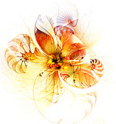 Framed Art Digital Art - Petals of Gold by Amanda Moore