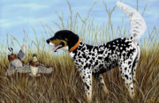 Setter Pointer Paintings - Pete by Deborah Collier