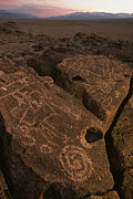 Owens Valley Art - Petroglyphs On Volcanic Rock In Owens by Phil Schermeister