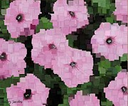 Holley Jacobs Metal Prints - Petunia Metal Print by Holley Jacobs