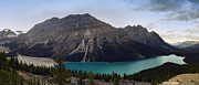 Turquiose  Metal Prints - Peyto Lake - Canadian Rocky Mountains Metal Print by Daniel Hagerman