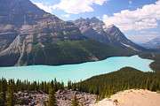 National Pyrography Framed Prints - Peyto Lake Framed Print by Philip Neelamegam