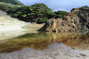 Pfeiffer Beach Art - Pfeiffer beach landscape by Pierre Leclerc