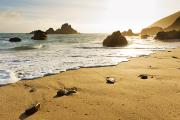 Pfeiffer Beach Photos - Pfeiffer Burns Beach by Quincy Dein - Printscapes